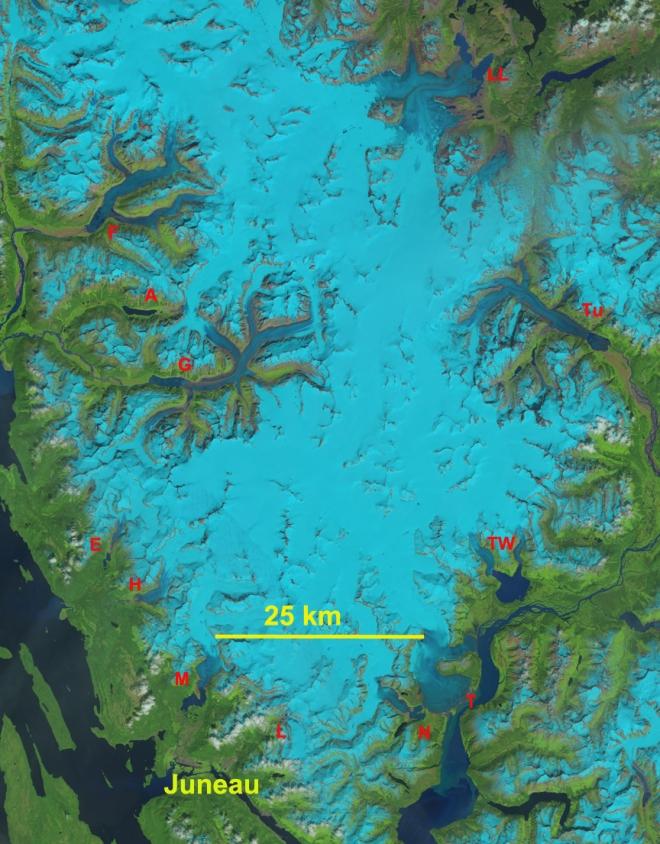 Juneau icefield 2013