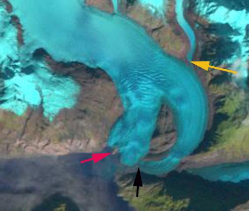 riggs glacier 1990