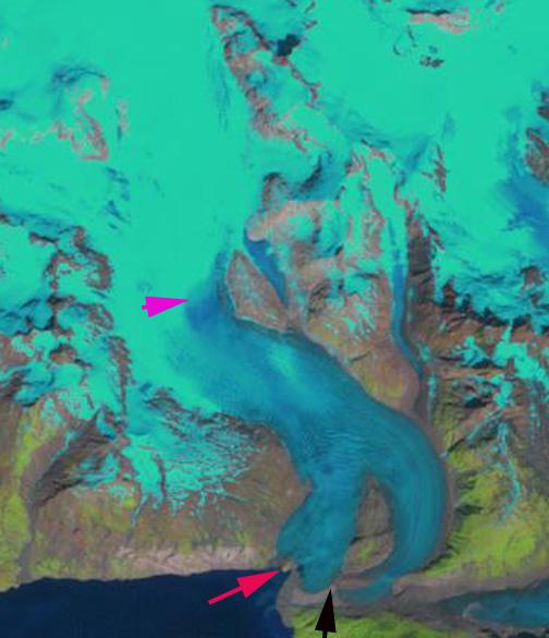 riggs glacier 1999