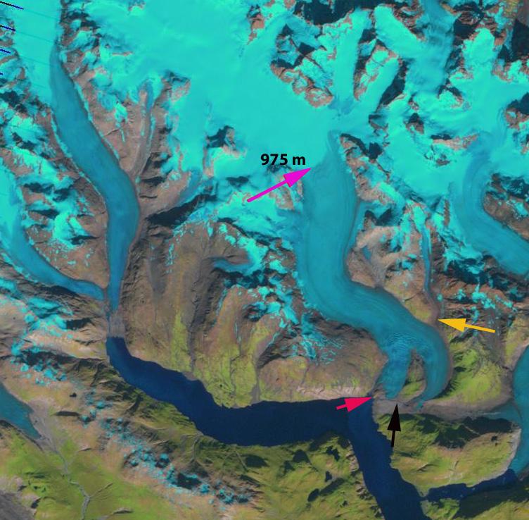 Riggs glacier 2010