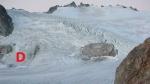 Neve Glacier 2009 Accumulation zone