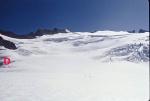 Neve Glacier accumulation zone 2001