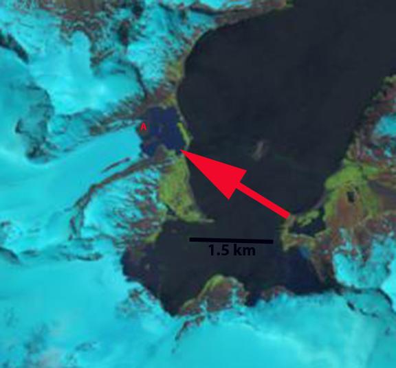 purvis glacier 2013