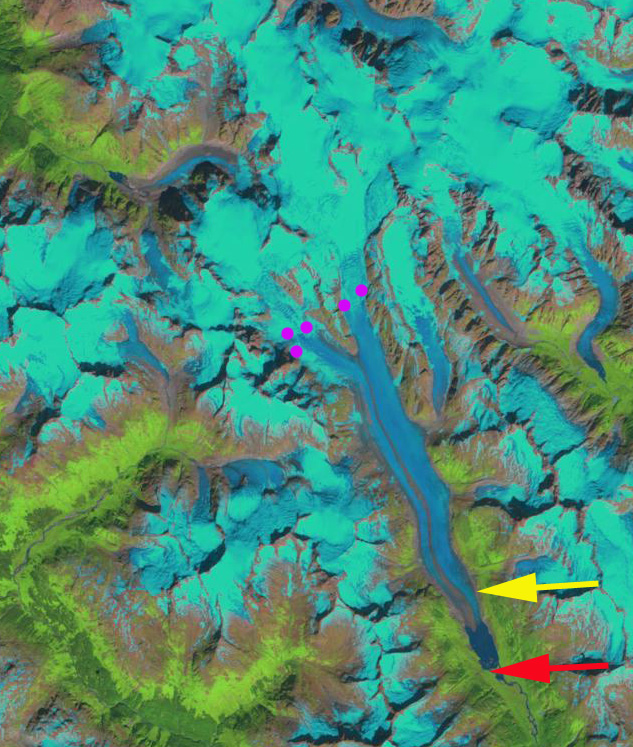 ferebee glacier 1999