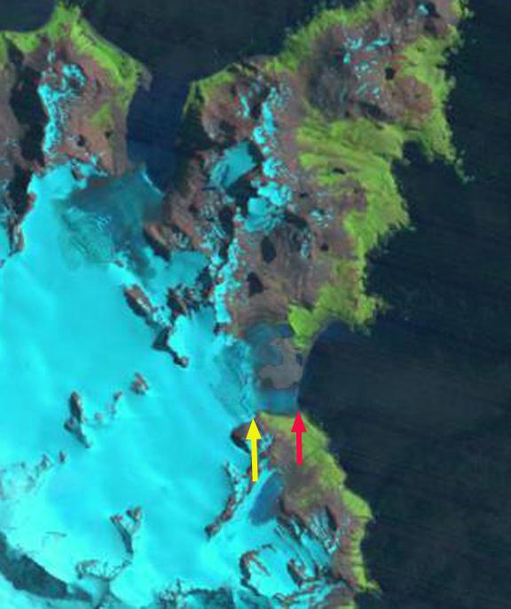 bertrab glacier 1989