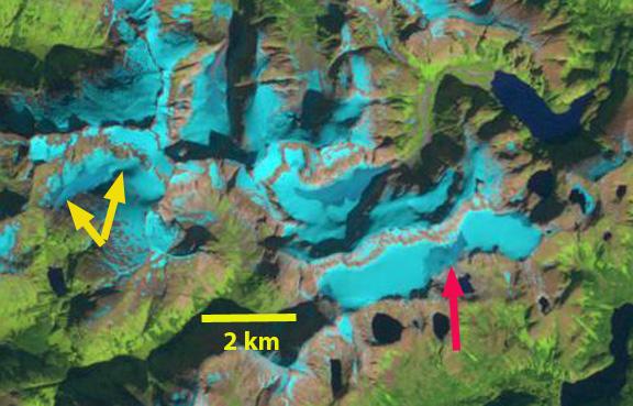 mahsa icefield 1986