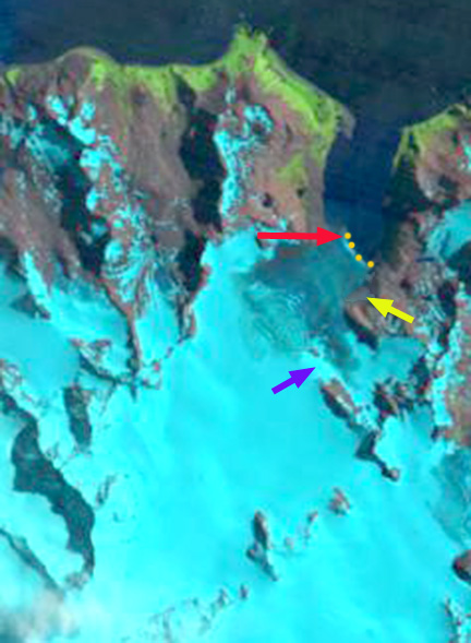 weddel glacier 1989